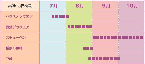 収穫時期表(画像)
