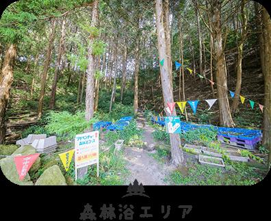 森林浴エリア