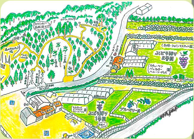 幸果園の手書きマップ